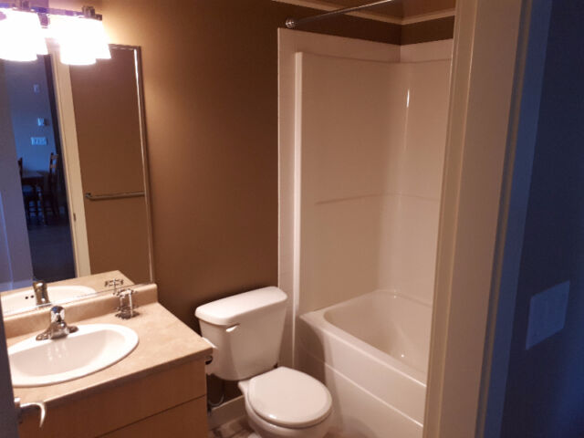 $700 Furnished room for rent in 2 bed/bath condo - Langford