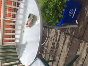 Summer Patio sale for $60