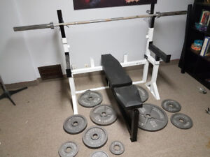 Northern Lights bench, Olympic bar, 255 lbs of weights