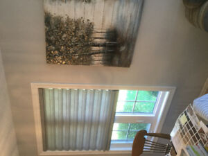 Big Drop in Price!!Three Hunter Douglas  Cordless Cloth Blinds!