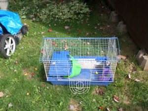 Ginuea pig/mouse cage