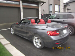 bmw 230 i m package cabriolet