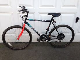 His andHers Magna Bikes