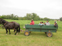 Birthday Party Package - Rivers North Ranch