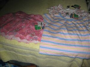 size 12 months 2 tops and 1 skirt
