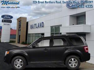2012 Ford Escape XLT   - Low Mileage -