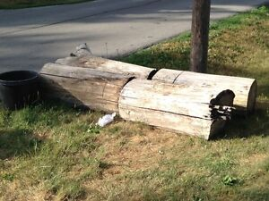 Free Logs - can be rolled or chain sawed - FREE FIREWOOD