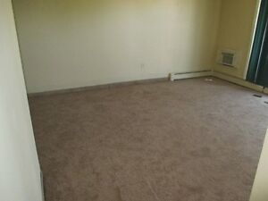 BEAUTIFUL TWO BED ROOM CONDO IN SOUTH OF LONDON CAL 519-673-9819 London Ontario image 5