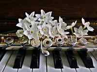 Piano & Flute Lessons