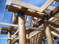 Carpentry / Renovation / Timber framing!