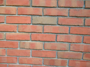 New Red Bricks