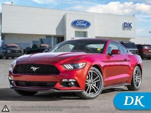 2016 Ford Mustang EcoBoost Premium w/Leather, Nav, Heated and Co