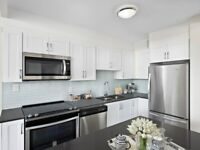 Newly Renovated & Spacious - 2 bedrooms Apartment for Rent