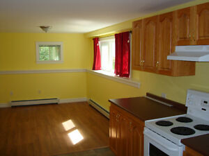 One bedroom apartment in a residential home in Kearney Lake
