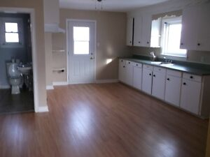 Large Upstair 1000 sf 3 bedroom apartment available February 1st