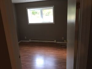 One bedroom basement apartment plus den for rent in Pasadena