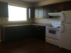 Beautifully Renovated 2-Bedroom Townhouse for rent in Yorkton