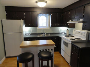 Available December 15 2016 Large 1 Bedroom Apt, Bliss Street