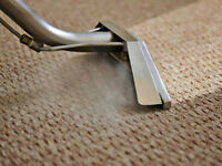 Best Steam carpet cleaning AFFORDABLE PRICES!