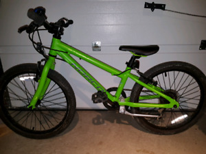 Norco Storm 2.3 kids 20 inch tires Lime green.
