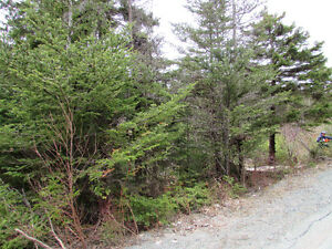 INCREDIBLE PRICE...61 SILVER SPRINGS RD., CON. HR., 1 ACRE. St. John's Newfoundland image 1