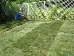 lawn care buisness for sale London Ontario image 5