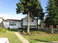 4 bed, 1.5 plus bath 4 level split family home in Evansdale