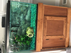 29gallon fish tank with everything you'll need included !