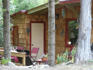 Cedar Cottage - August 2-6, Jazz Fest long weekend availability