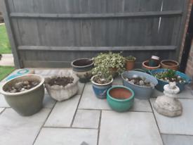 Garden pots open to offers