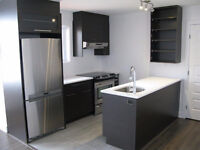 A very nice modern apartment in the Plateau