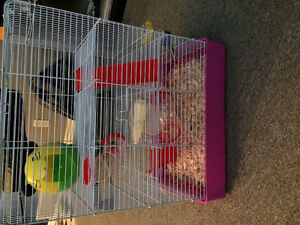 Hamster or rat cage for sale