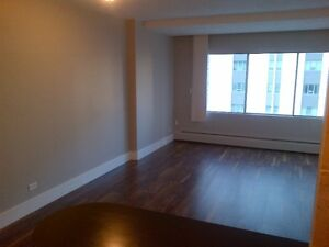 Newly Renovated 1 Bedroom in Downtown. Great Incentives!