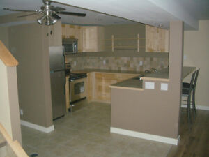 Beautiful Professionally Finished Basement Suite cls to Downtown
