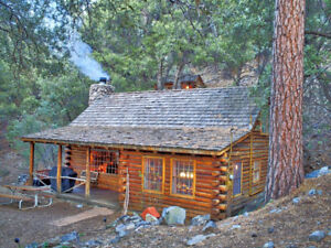 Cabin or cottage near Grand Beach Wanted!