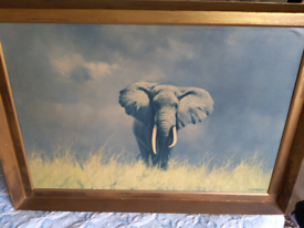 David Shepherd Wise Old Elephant 1968 print