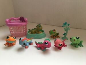Lps lizzards and frogs Kitchener / Waterloo Kitchener Area image 1
