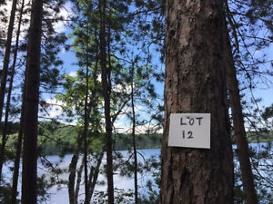 183 LOT 12 GRUNWALD RD. MADAWASKA VALLEY