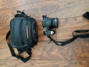 Fujifilm finepix S camera and case.