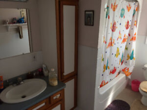 Great room with private bathroom close to Brock Univ