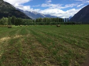 40 acres fertile farm land for sale Pemberton