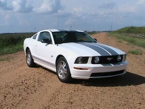 Looking to buy a Mustang 05+