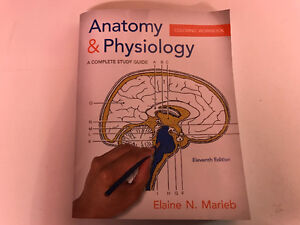 Anatomy & physiology colouring workbook (11th ed.) NAIT
