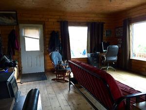 Log home on 35 acres in Canyon Creek KM 1546.5 Alaska Highway Yukon image 6