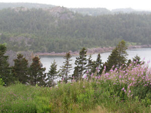 …1.24 ACRE OCEANFRONT..INCREDIBLE VIEWS..AVONDALE. St. John's Newfoundland image 11