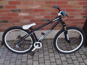 2009 Specialized P.2 Cr-Mo Dirt Jumper