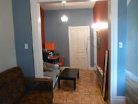 RÉDUIT /- - Mile-End/plateau /for rent 3-4 bedrooms, HUGE PATIO