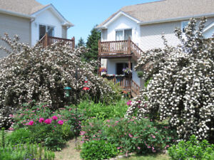 2 BR available at the Garden Apartments of Bouctouche