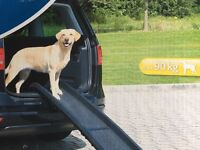 Trickie new dog ramp.. for dog weighing up to 90kg! Almost new!