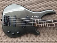 Electric 5 string bass guitar